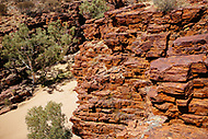 Image Ref: CA709<br />