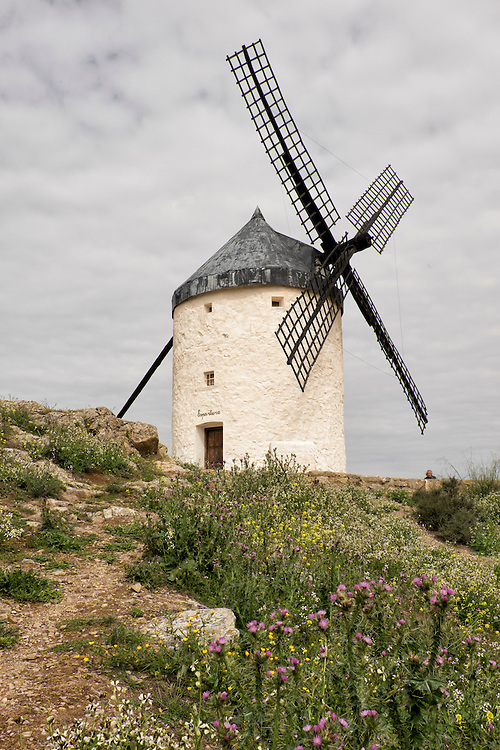 Near Consegra on the plains of Spain, lie the picturesque windmills- reminiscent of Don Quixote's time.