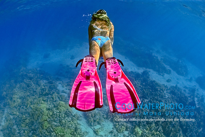 woman snorkeler, diving over coral reef, Kiholo Bay, Kohala Coast, Big Island, Hawaii, USA, Pacific Ocean