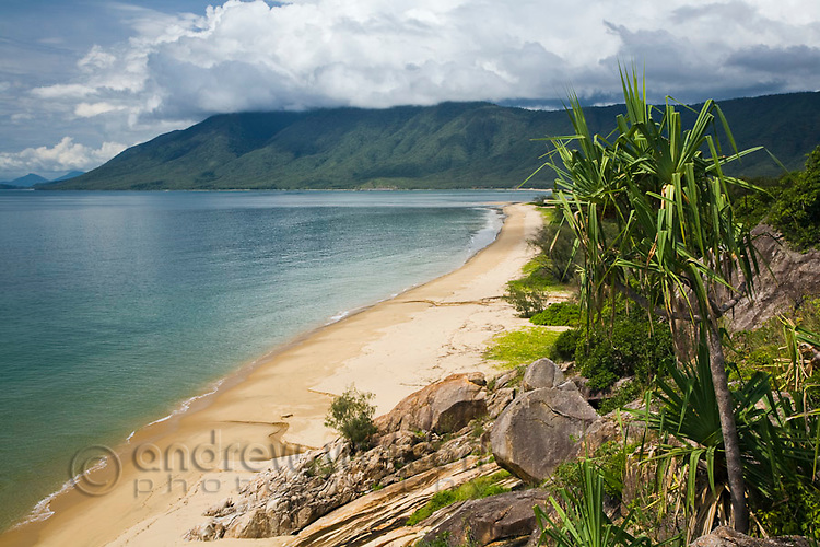 View along Wangetti Beach and Coral Sea from Rex's Lookout near Cairns, Queensland, Australia