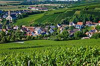 Deutschland, Baden-Wuerttemberg, Markgraefler Land, Weinort Auggen, Uebersicht | Germany, Baden-Wuerttemberg, Markgraefler Land, wine village Auggen, overview