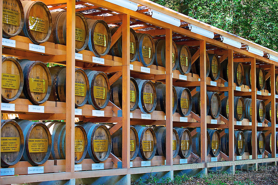 French wine barrels at the Meiji Shrine in Tokyo, Japan