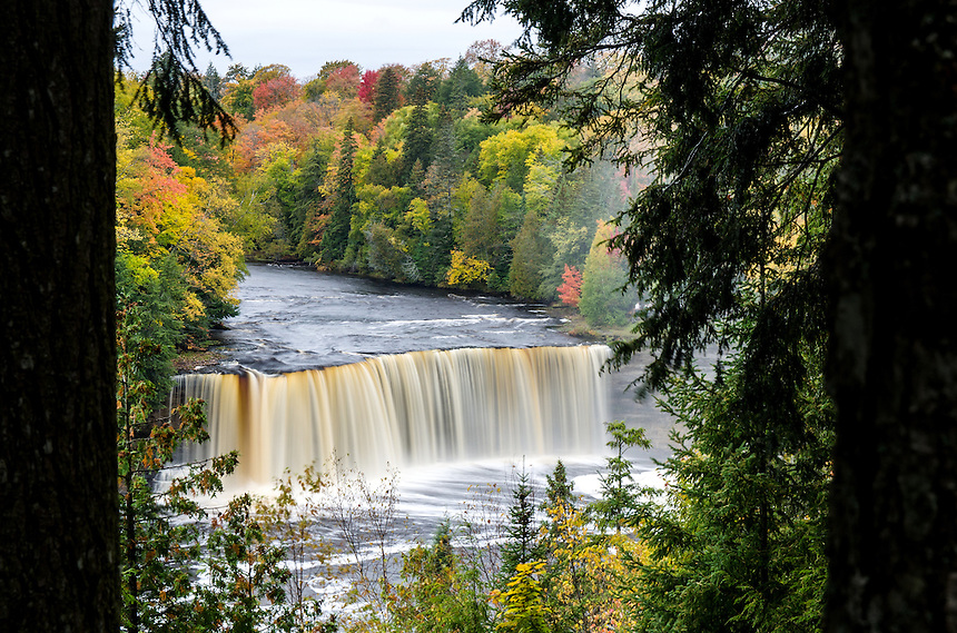 Autumn color at Tahquamenon Falls. Paradise, MI