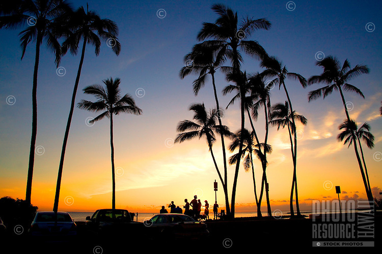 Onlookers watch a beautiful sunset between palm trees on the North Shore of O'ahu.