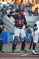 Salem-Keizer Volcanoes catcher Ricardo Genoves (9) throws back to the pitcher during a Northwest League game against the Hillsboro Hops at Ron Tonkin Field on September 1, 2018 in Hillsboro, Oregon. The Salem-Keizer Volcanoes defeated the Hillsboro Hops by a score of 3-1. (Zachary Lucy/Four Seam Images)