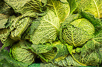 Savoy cabbage is on sale in a grocery store in New York on Thursday, January 23, 2014. (© Richard B. Levine)
