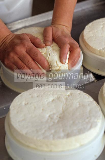 Europe/France/Auvergne/63/Puy-de-Dôme/Chambon sur Lac: Préparation du Saint Nectaire fermier chez Mme Fournier