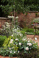 White color theme garden with brick patio and wall, patio furniture. Plants include white English roses Rosa, white geranium, Campanula, Allium, Digitalis foxglove, Astrantia major, with fennel herb, green lady's mantle Alchemilla, dark Trifolium clover, Buxus boxwood shrubs for serene green and white classic flower gardening in the backyard