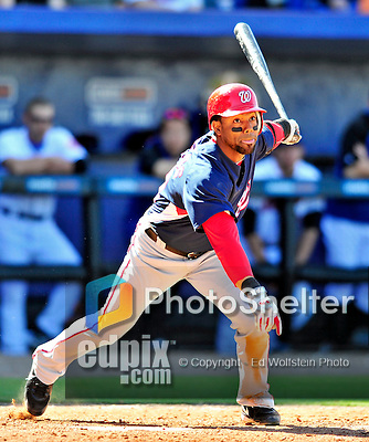 7 March 2010: Washington Nationals' outfielder Willy Taveras in action during a Spring Training game against the New York Mets at Tradition Field in Port St. Lucie, Florida. The Mets edged out the Nationals 6-5 in Grapefruit League pre-season play. Mandatory Credit: Ed Wolfstein Photo