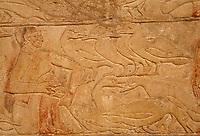 Afrique/Egypte/Saqqara: La tombe de Mérérouka - Représentation du gavage des oies et canards //   Africa, Egypt, Saqqara: Tomb of Mereruka , Force-feeding gooses and ducks
