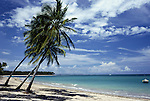 Itaparica Island, Brazil. Tropical beach; three palm trees in the foreground, green sea, blue sky and just a few clouds. Bahia.