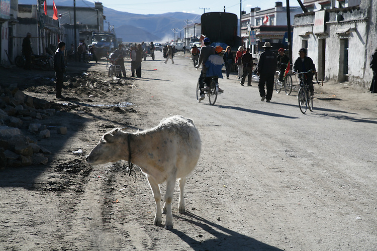 Old Tingiri at about 14,000 ft. in Tibet is a stopping off place for climbers and local farmers.