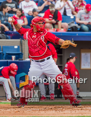 7 March 2015: Washington Nationals catcher Wilson Ramos in Spring Training action against the St. Louis Cardinals at Space Coast Stadium in Viera, Florida. The Nationals rallied to defeat the Cardinals 6-5 in Grapefruit League play. Mandatory Credit: Ed Wolfstein Photo *** RAW (NEF) Image File Available ***