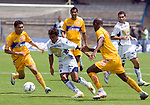 UNAM Pumas forward Ismael Iniguez (C) drives the ball between UANL Tigres defenders Julio Santos (R) and the midfielder Carlos Morales (L) during their soccer match in the University Stadium in Mexico City, April 23, 2006. UANL midfielder Walter Gaytan (behind left) and UNAM defender Israel Castro (behind right) look on the scene. forUNAM Pumas tied 1-1 to UANL Tigres. Photo  by © Javier Rodriguez