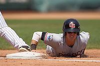 Oregon State second baseman Andy Peterson (14) dives back to first base during Game 11 of the 2013 Men's College World Series against the Mississippi State Bulldogs on June 21, 2013 at TD Ameritrade Park in Omaha, Nebraska. The Bulldogs defeated the Beavers 4-1, to reach the CWS Final and eliminating Oregon State from the tournament. (Andrew Woolley/Four Seam Images)