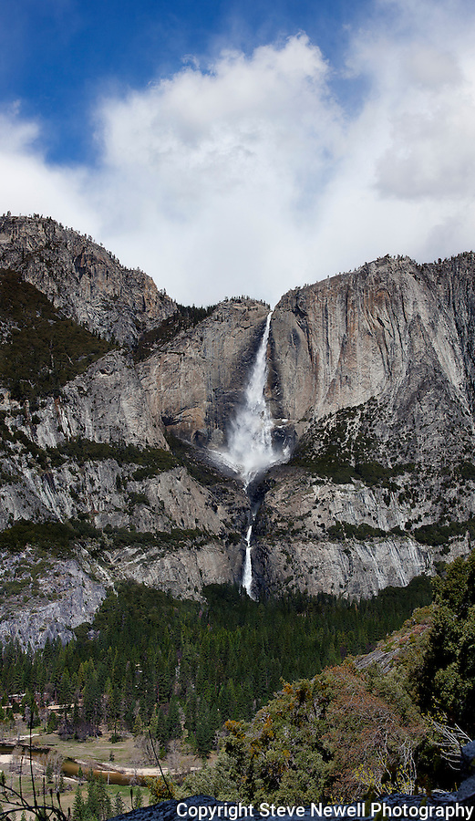 """Yosemite Falls Waterfall"" Yosemite National Park, California. THIS A ONE OF A KIND OF YOSEMITE FALLS WATERFALL!  I spent two weeks in the Spring of 2013 climbing up the opposite canyon's wall in order to get an angle that captured all three sections of the waterfall.  I learned on the Yosemite National Park's website that no one had a photograph of the middle section of the waterfall.  Their description of the middle section is ""often ignored middle section""  All other photographers only have photographs showing an angle that has the upper and lower sections in view.  In my new vertirama (vertical panoramic) you can see the water falling in all three sections with the Yosemite Lodge down by the Merced River in the lower left."