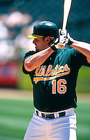 OAKLAND, CA - Jason Giambi of the Oakland Athletics bats during a game against the Tampa Bay Devil Rays at the Oakland Coliseum in Oakland, California on May 30, 2001. Photo by Brad Mangin