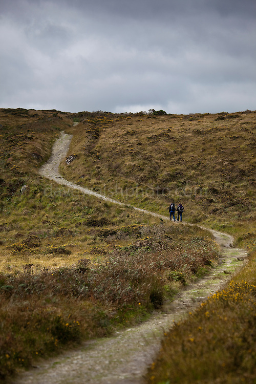 Two hikers on the Kerry Way hiking trail, near Torc Mountain, Kerry. The Kerry Way is a 214km long circular trail of the Iveragh Peninsula, that takes some nine days to walk.