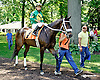 Shogun Samuri before at Delaware Park on 7/17/14