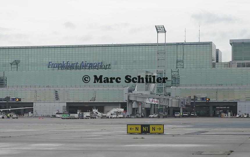 Terminal 2 des Frankfurter Flughafen - Frankfurt 16.10.2019: Eichwaldschule Schaafheim am Frankfurter Flughafen