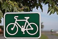 Europe/France/Poitou-Charentes/17/Charente-Maritime/Ile de Ré/Rivedoux-Plage: Piste cyclable
