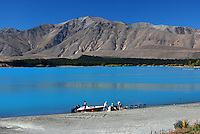 Lake Tekapo, South Island, New Zealand, 201004085195..Copyright Image from Victor Patterson, 54 Dorchester Park, Belfast, United Kingdom, UK. Tel: +44 28 90661296. Email: victorpatterson@me.com; Back-up: victorpatterson@gmail.com..For my Terms and Conditions of Use go to www.victorpatterson.com and click on the appropriate tab.