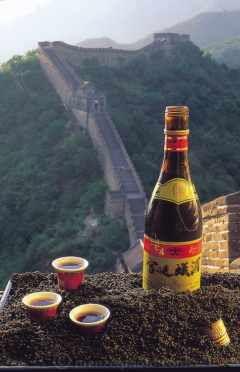 Ant wine, pictured on the famed Great Wall of China, among a kilo of black ants, is actually ant-steeped rice brandy, and is lauded by Chinese traditional medicine doctors for its medicinal treatment of hepatitis-B and rheumatism.(Man Eating Bugs page 104 Bottom)