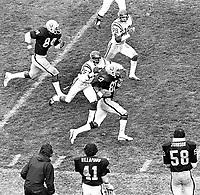 Raiders Joe Stewart #80 running with#84 Derrick Ramsey against the Vikings.#25 Nate Allen..(1978 photo/Ron Riesterer)
