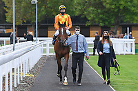 Winner of The British EBF Novice Stakes Second Slip ridden by George Wood and trained by James Fanshawe is led into the Winners enclosure during Horse Racing at Salisbury Racecourse on 11th September 2020
