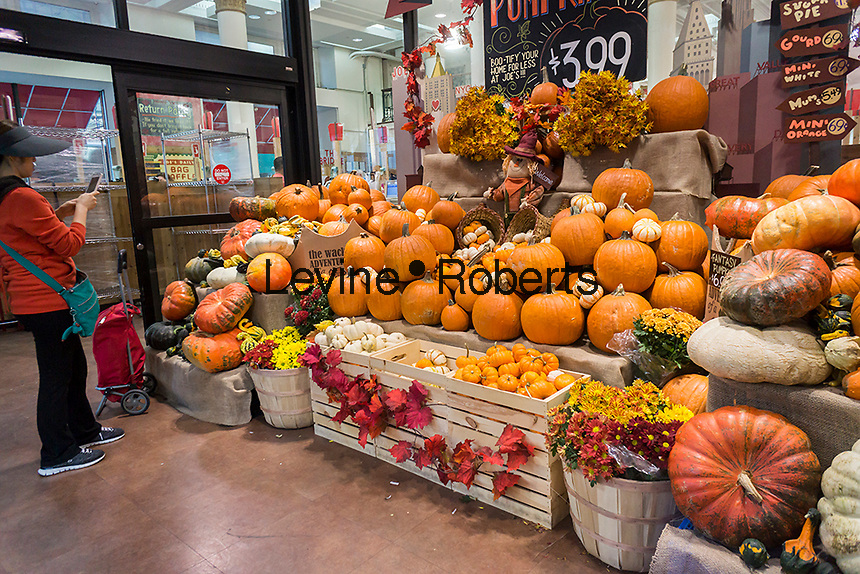 Pumpkin display in a supermarket in New York on Thursday, October 6, 2016. Supplies of pumpkins are expected to be able to meet this year's demands as opposed to last year when the fear of a pumpkin shortage gripped the nation.  (© Richard B. Levine)