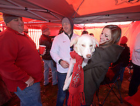 NWA Democrat-Gazette/BEN GOFF @NWABENGOFF<br /> Max Gurley (from left) of Blytheville, Cal Rose and wife Elizabeth Rose of Fayetteville play with the Rose's dog Cotton on Saturday Nov. 21, 2015 while tailgating before the Arkansas football game against Mississippi State in Fayetteville.