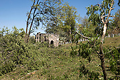 April 17, 2011. Raleigh, NC.. Several large trees were uprooted in Oakwood Cemetary..  A record 92 tornadoes tore through North Carolina on April 16, 2011, killing at least 22 people and injuring more than 80 others. Damage to the city of Raleigh was extensive, with much of it concentrated in the Oakwood neighborhood on the edge of downtown..