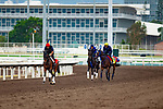 12-08-18 LONGINES Hong Kong International Races works Sha Tin Hong Kong