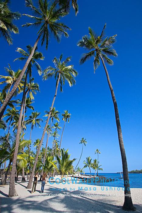 Woman visitors, Keone`ele Cove, and Coconut Palms, Cocos nucifera, Pu`uhonua o Honaunau or Place of Refuge National Historical Park, Honaunau, Big Island, Hawaii