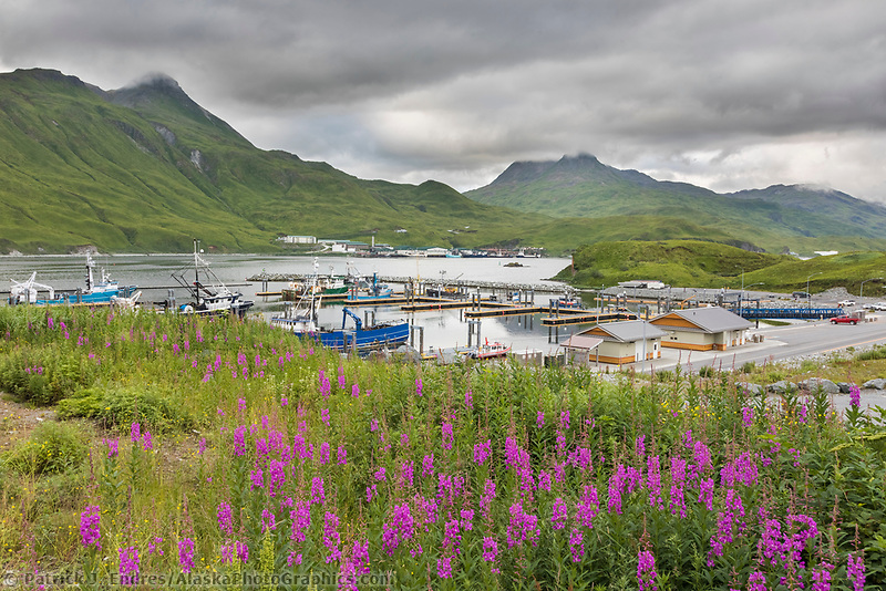 Captains Bay, Dutch Harbor, Aleutian Islands, Alaska