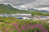 Captains Bay, Dutch Harbor, Aleutian Islands, Alaska