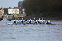 Crew: 153   Weybridge   MasF<br /> <br /> Quintin Head 2019<br /> <br /> To purchase this photo, or to see pricing information for Prints and Downloads, click the blue 'Add to Cart' button at the top-right of the page.