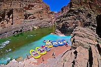 Confluence of the Colorado River and Havasu Creek, Whitewater rafting trip (oar trip) on the Colorado River in Grand Canyon, Grand Canyon National Park, Arizona USA
