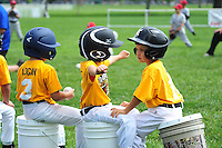 PNLL T-Ball Marauders action 2015 (Photo by AGP Photography)