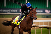 LOUISVILLE, KY - MAY 03: Battle of Midway, owned by Fox Hill Farms, Inc. and trained by Jerry Hollendorfer, exercises in preparation for the Kentucky Derby  gallops at Churchill Downs on May 03, 2017 in Louisville, Kentucky. (Photo by Alex Evers/Eclipse Sportswire/Getty Images)