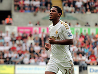 Saturday, 01 September 2012<br /> Pictured: Jonathan de Guzman of Swansea<br /> Re: Barclays Premier League, Swansea City FC v Sunderland at the Liberty Stadium, south Wales.