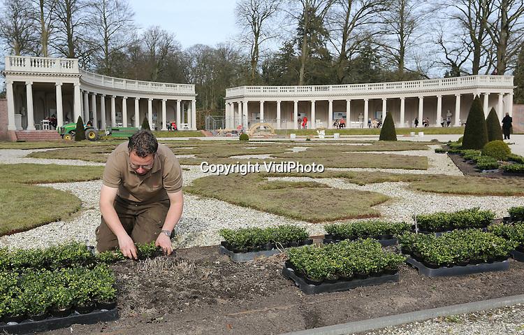 """Foto: VidiPhoto..APELDOORN - Robert Rozenboom, tuinman van Paleis Het Loo, bekijkt en verwerkt de eerste van in totaal 80.000 Ilex-planten in de tuinen van het paleis in Apeldoorn. De beroemde buxustuin werd enkele jaren geleden getroffen door een schimmel die de struikjes liet verdrogen en afsterven. De nieuwe Ilex-planten, de Japanse hulst, zijn resistent tegen schimmels en lijken sterk op buxus. Naar verwachting is deze tuinrenovatie van Paleis Het Loo eind mei voltooid. Kwekerscollectief Ilex Select is verantwoordelijk voor de levering van de Ilex-planten. Kweker en woordvoerder namens Ilex Select Ronald Stolwijk: """"Na jaren van uitgebreid onderzoek op locatie is Ilex crenata Dark Green als beste getest. Wij zijn erg trots dat deze Ilexsoort zo'n prominente rol krijgt in de tuinen van Paleis Het Loo.""""."""
