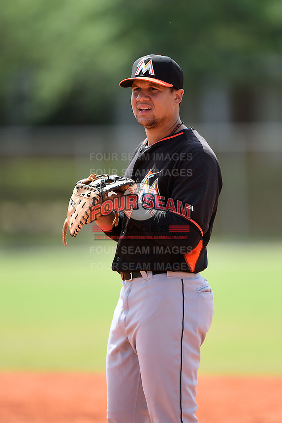 Miami Marlins first baseman Viosergy Rosa (34) during a minor league spring training game against the New York Mets on March 28, 2014 at the Roger Dean Stadium Complex in Jupiter, Florida.  (Mike Janes/Four Seam Images)