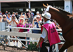Fans crowd the rail at the paddock at Monmouth Park to get a photo of Maximum Security as he schools between races at Monmouth Park in Oceanport, New Jersey on Saturday May 18, 2019. Photo By Bill Denver/EQUI-PHOTO