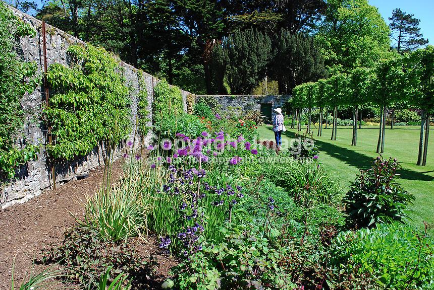 Walled garden, Earl of Antrim Estate, Glenarm, Co Antrim, N Ireland, UK, 201205265883..© Victor Patterson, 54 Dorchester Park, Belfast, N Ireland. Tel: +44 2890661296; Mobile: +44 7802 353836; Emails: victorpatterson@me.com & victorpatterson@gmail.com; www.victorpatterson.com