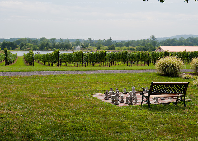 A bench and chess patio provide a picturesque and calm space to enjoy the scenery in front of Old House Vineyards.