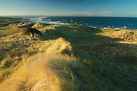 The East Lothian coastline, the Pentland Hills and Gullane Dunes from Gullane Point, Gullane, East Lothian