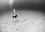 A diver swims along a sandy bottom in black and white, Yap, Federated States of Micronesia, Pacific Ocean