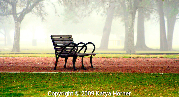 Misty mornings at Hermann Park in Houston, Texas.