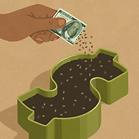 Hand planting seeds from dollar seed packet ExclusiveImage